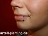 pierc_lippe